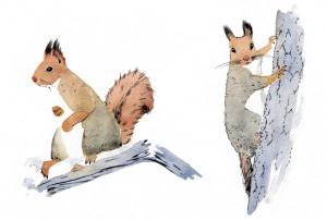 varpu määttänen feministi puussa sarjakuvablogi oravat kuvitus sarjakuva